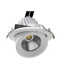 Foco LED orientable 50W 24º